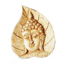 Buddha Face on a leaf